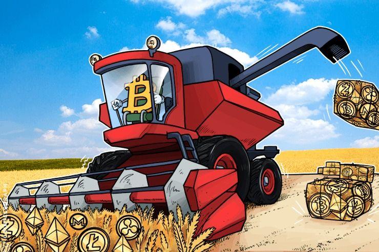 Vòng Quay Bitcoin – Altcoin – Usd Lấy Hết Tiền Từ Trader Ra Sao?